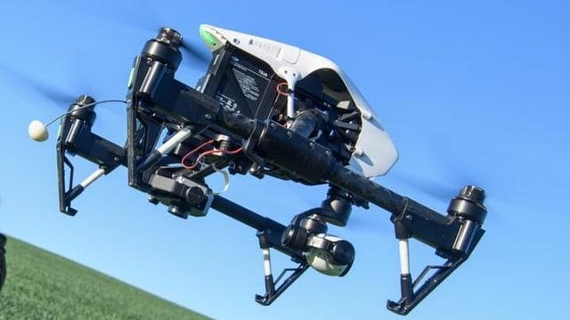 Curs per chattar chavrielins cun dronas 2019
