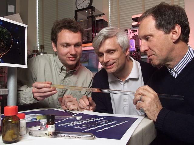 Drei Physiker sitzen nebeneinander und betrachten eine Glasröhre.