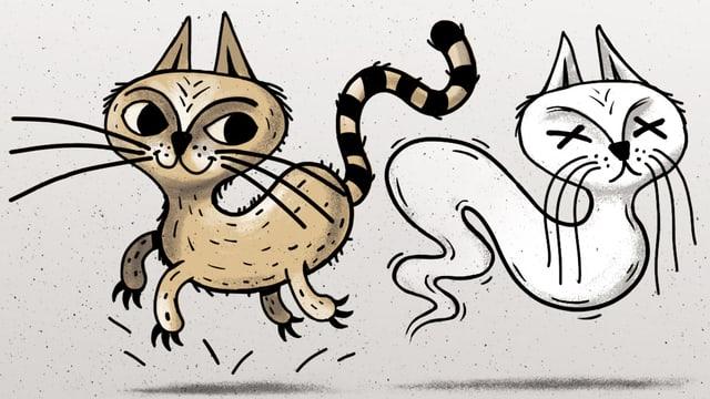 Zwei Katzen: Die eine ist braun und voller Leben, die andere hat die Augen geschlossen und erinnert an ein Gespenst.