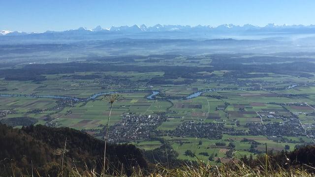 Blick vom wolkenlosen Grenchenberg auf das Mittelland und die dahinterliegenden Alpen.