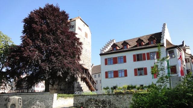 Schloss Arbon