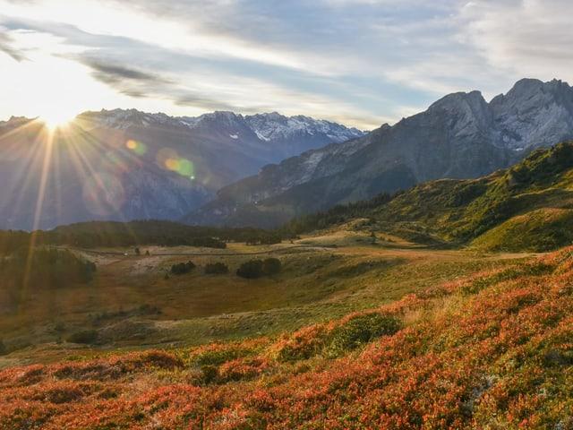 In den Bergen verfärbt sich auch vieles herbstlich. Die Sonne geht hinter dem Berg unter.