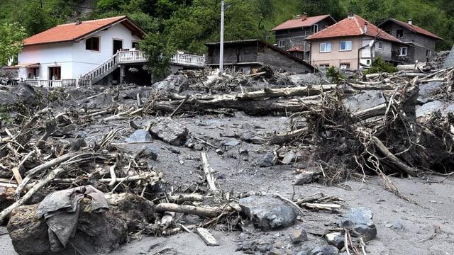 Im Hintergrund Häuser, im Vordergrund Steine, Schlick und herausgerissene Bäume.