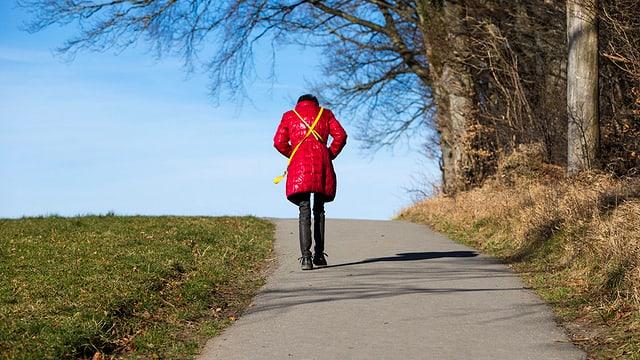 Eine Spaziergängerin auf dem Üetliberg