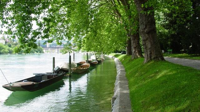 Ein Fluss, darauf Holzboote, daneben das grasbewachsene Ufer mit Bäumen.