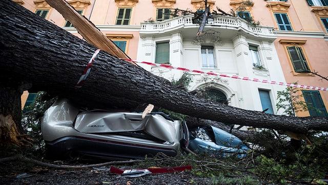 Auto sut ina plonta derschida davant ina chasa bella e gronda a Roma.