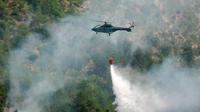 Helikopter wirft Wasser auf rauchnenden Wald ab.