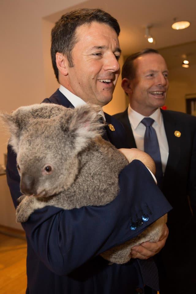 Matteo Renzi mit Koala