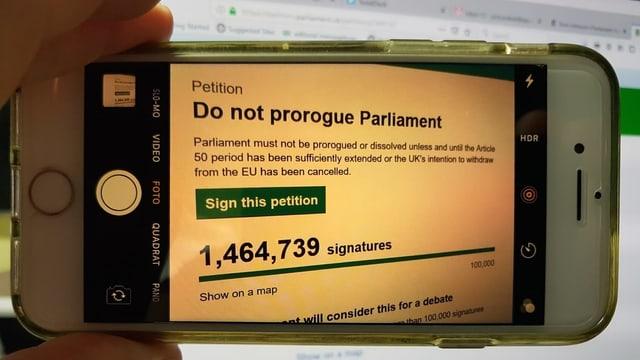Hand, die Handy hält. Darauf sieht man die Homepage der Petition.