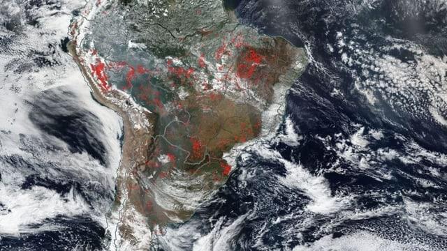 Rote Punkte signalisieren Brandherde auf einem Satellitenbild Südamerikas.