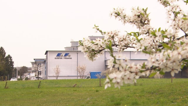 Fabrikgebäude im Grünen.
