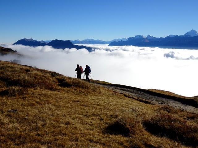 Herbstliche Wanderstimmung auf Berg. Braunes Gras im Vordergrund mit 2 Wanderern und weisses Nebelmeer im Hintergrund.