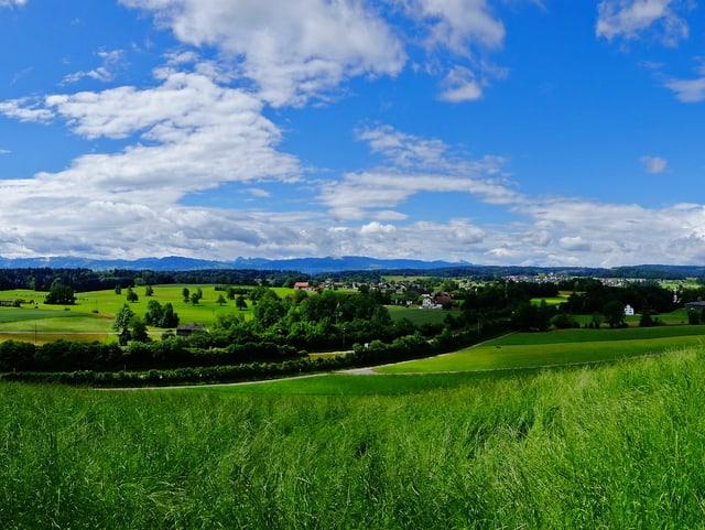 Wiese, Wälder, viel blauer Himmel