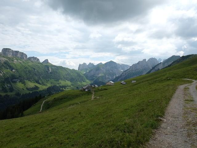 Blick auf die grüne Alp Sigel