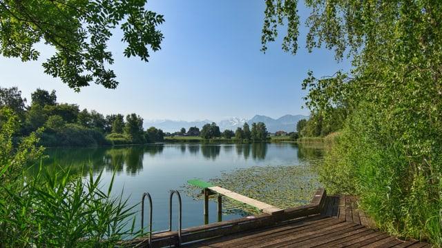 Blick auf den ruhigen See und die Alpen im Hintergrund.
