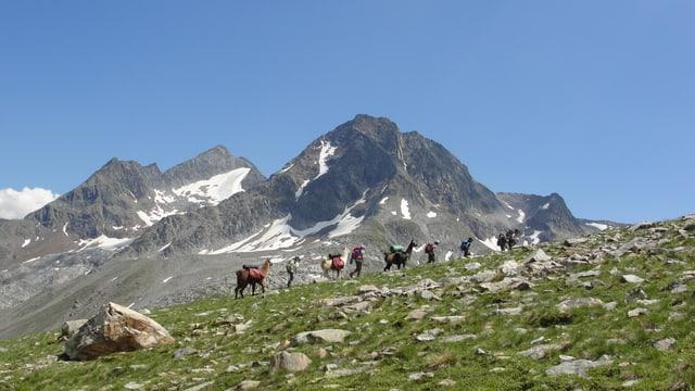 In trekking en la regiun