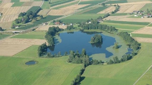 Kleiner See, umgeben von Feldern