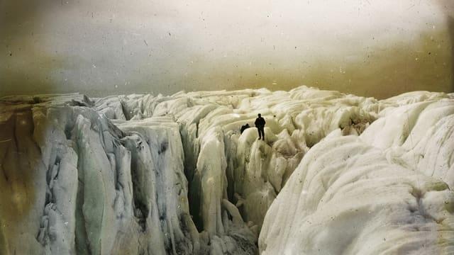Ein Foto von Eisblöcken in der Arktis.