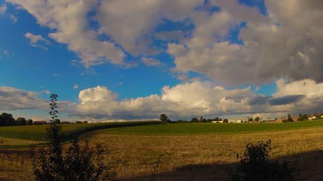 Blick über ein Feld. Darüber verschiedenartige Quellwolken.