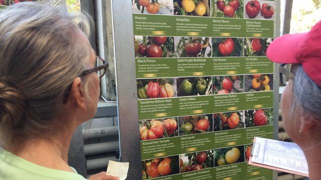 Zwei ältere Menschen stehen vor einem Plakat, auf dem ganz viele Tomatensorten aufgelistet sind.