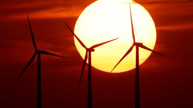 energia regenerabla, rodas da vent