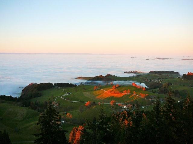Blick auf eine Hügellandschaft und das Nebelmeer.