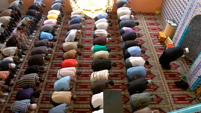 Moslems beim Beten in der Moschee