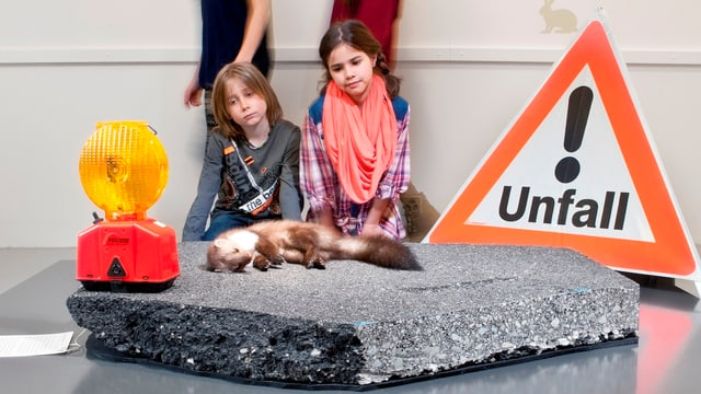 Zwei Kinder betrachten einen totgefahrenen Marder, der in der Ausstellung gezeigt wird.