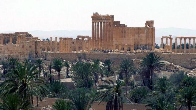 ruinas da la citad da Palmyra