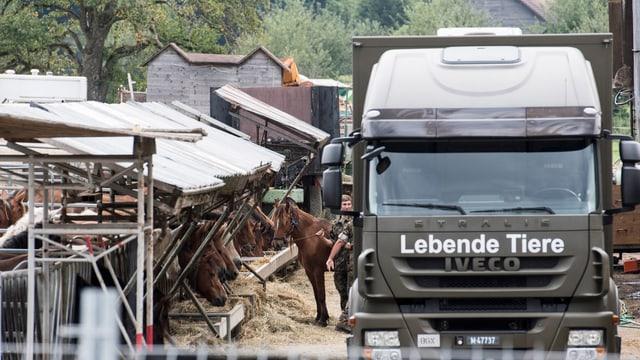 schuldads svizzers cargan chavals en in camiun