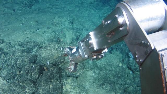 Ein Greifarm bohrt den Meeresboden auf.
