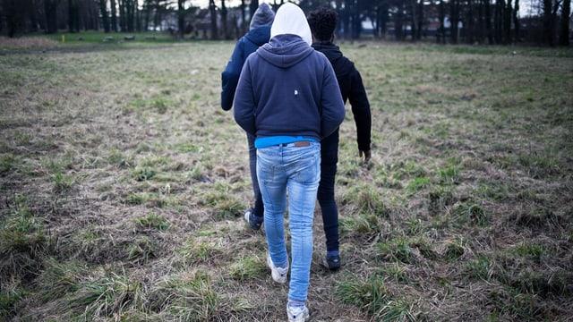 Drei Leute laufen mit dem Rücken zur Kamera über eine Wiese.