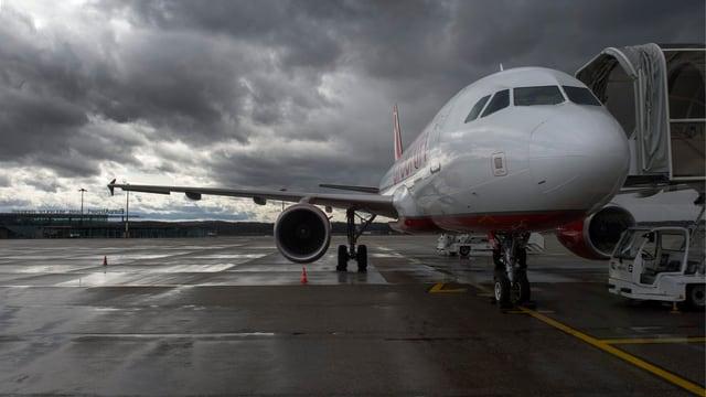 Ein Flugzeug auf dem Rollfeld in Basel, dahinter schwarze Wolken.