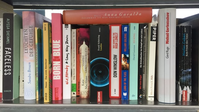 Verschiedene Bücher in einem Regal.