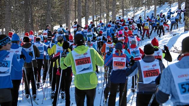 Curriduras e curridurs dal Maraton da skis engiadinais.