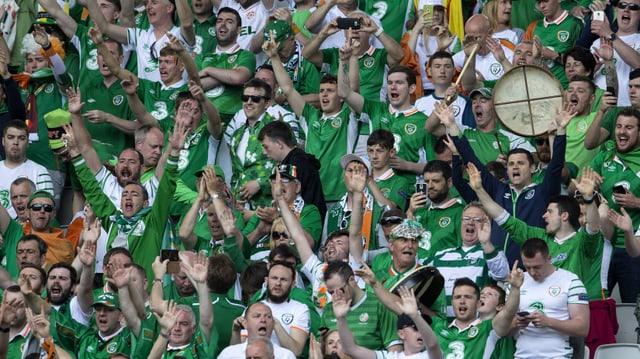 Singende Irische Fans im Stadion.