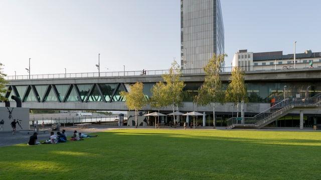 Die Basler Dreirosenbrücke mit Hochhaus im Hintergrund und Wiese im Vordergrund.