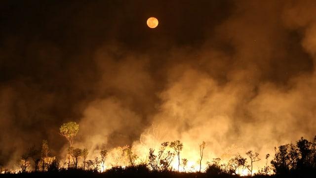 Brendender Amazonas bei Nacht.