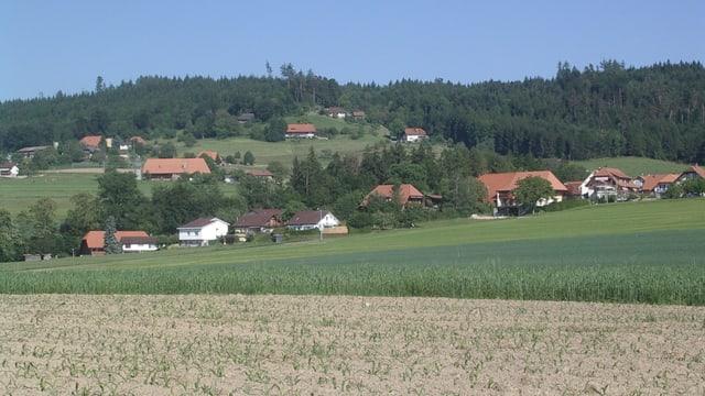 Blick über Felder auf Seedorf