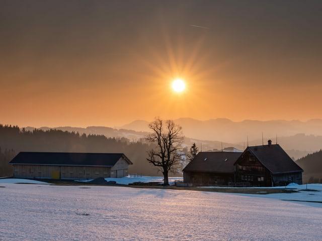 Sonnenuntergang bei gelbem Himmel mit Schneeresten auf den Wiesen