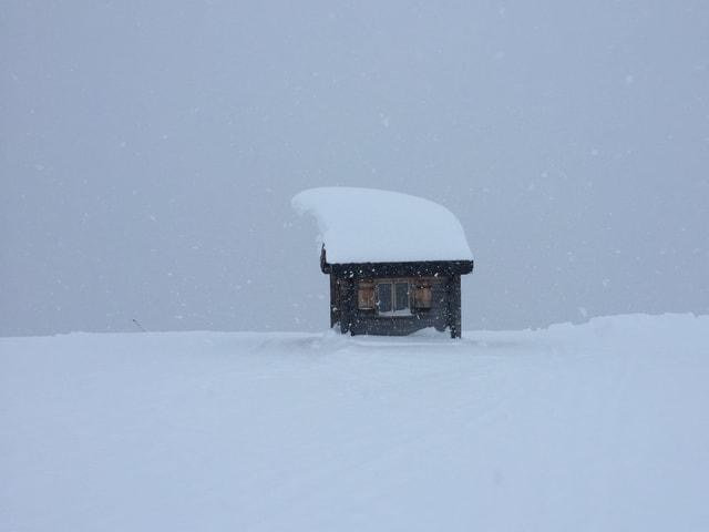 Holzhütte in Mitten von viel Neuschnee. Es schneit weiter und alles ist weiss. Auf dem Dach 1 m Neuschnee.