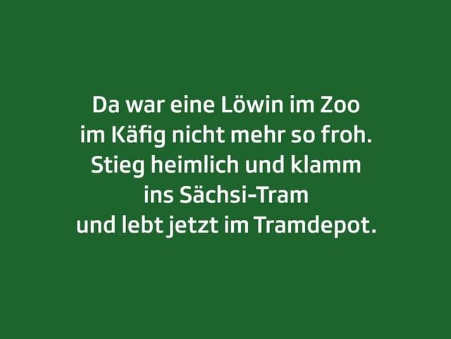 Weisser Text auf grünem Grund: Da war eine Löwin im Zoo im Käfig nicht mehr so froh. Stieg heimlich und klamm ins Sächsi-Tram und lebt jetzt im Tramdepot.