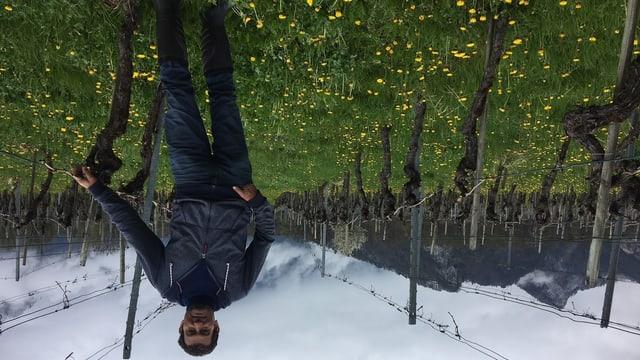 Der Weinbauer steht zwischen den Blumen und den Rebstöcken. Im Hintergrund Berge.