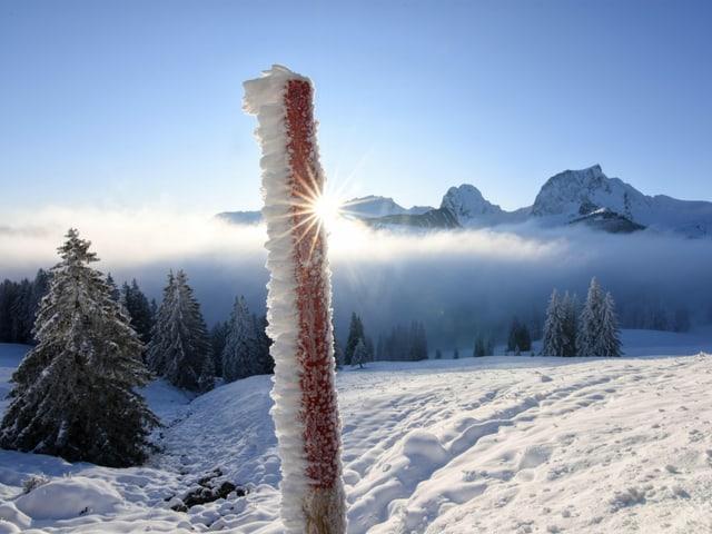 Raueis an einem Holzstab vor Bergen