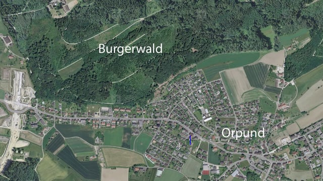 Luftaufnahme von Orpund bei Biel mit dem Burgerwald.
