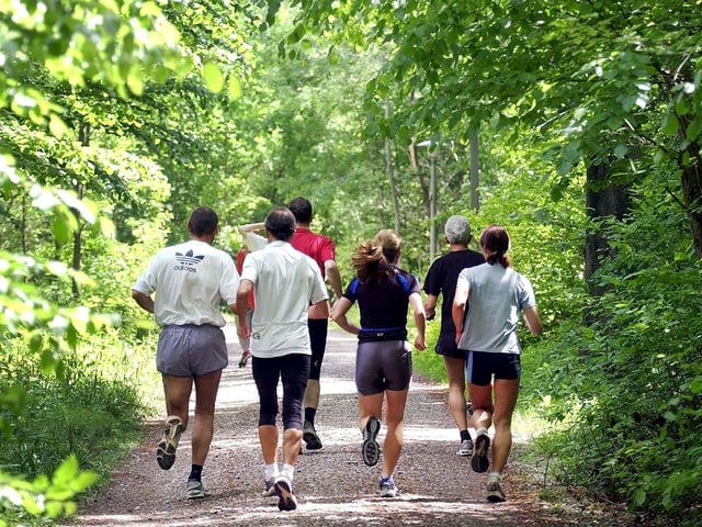 Eine Gruppe Menschen joggt im Wald.