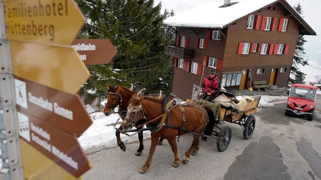 Pferde vor Hotel in Braunwald