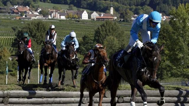 Pferde überspringen ein Hindernis
