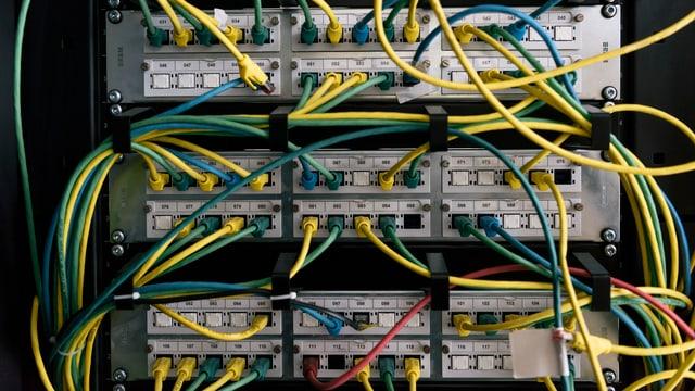 Eingesteckte Netzwerkkabel.
