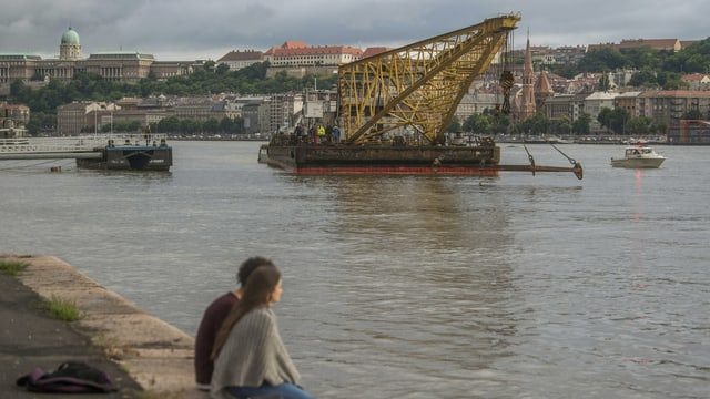 bartga cun crana sin il Danubi
